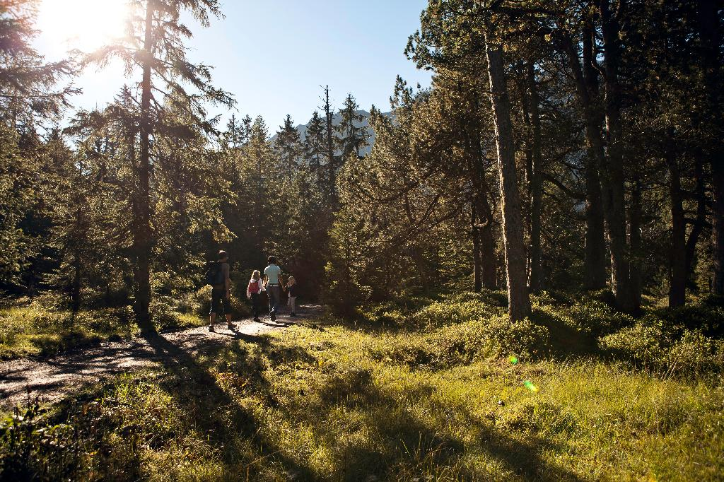Rossweid-Salwiden moor round walk