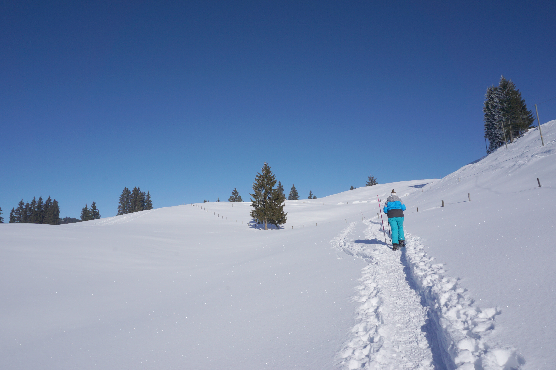 Schneeschuhtrail Marbachegg-Kreuzegg