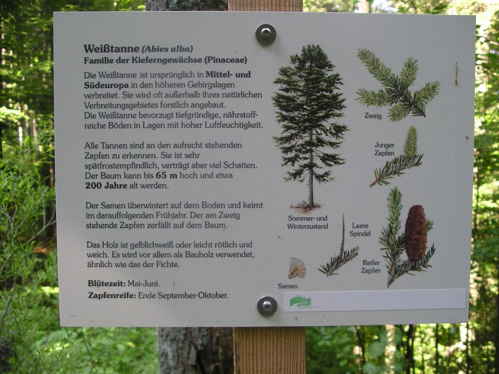 Lehrpfad Klosterwald