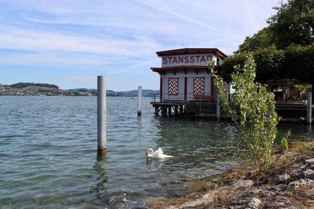 Vom See zum Bürgenstock