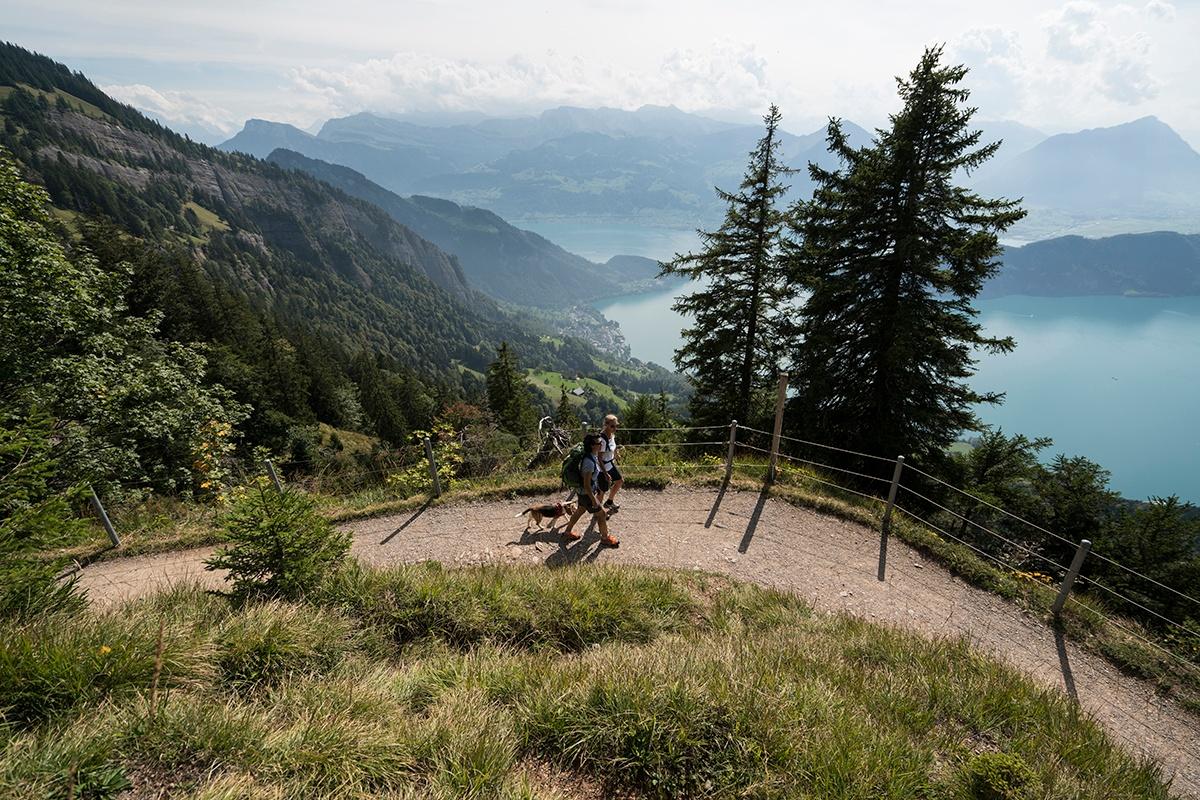 Rigi - Weg der Naturschätze