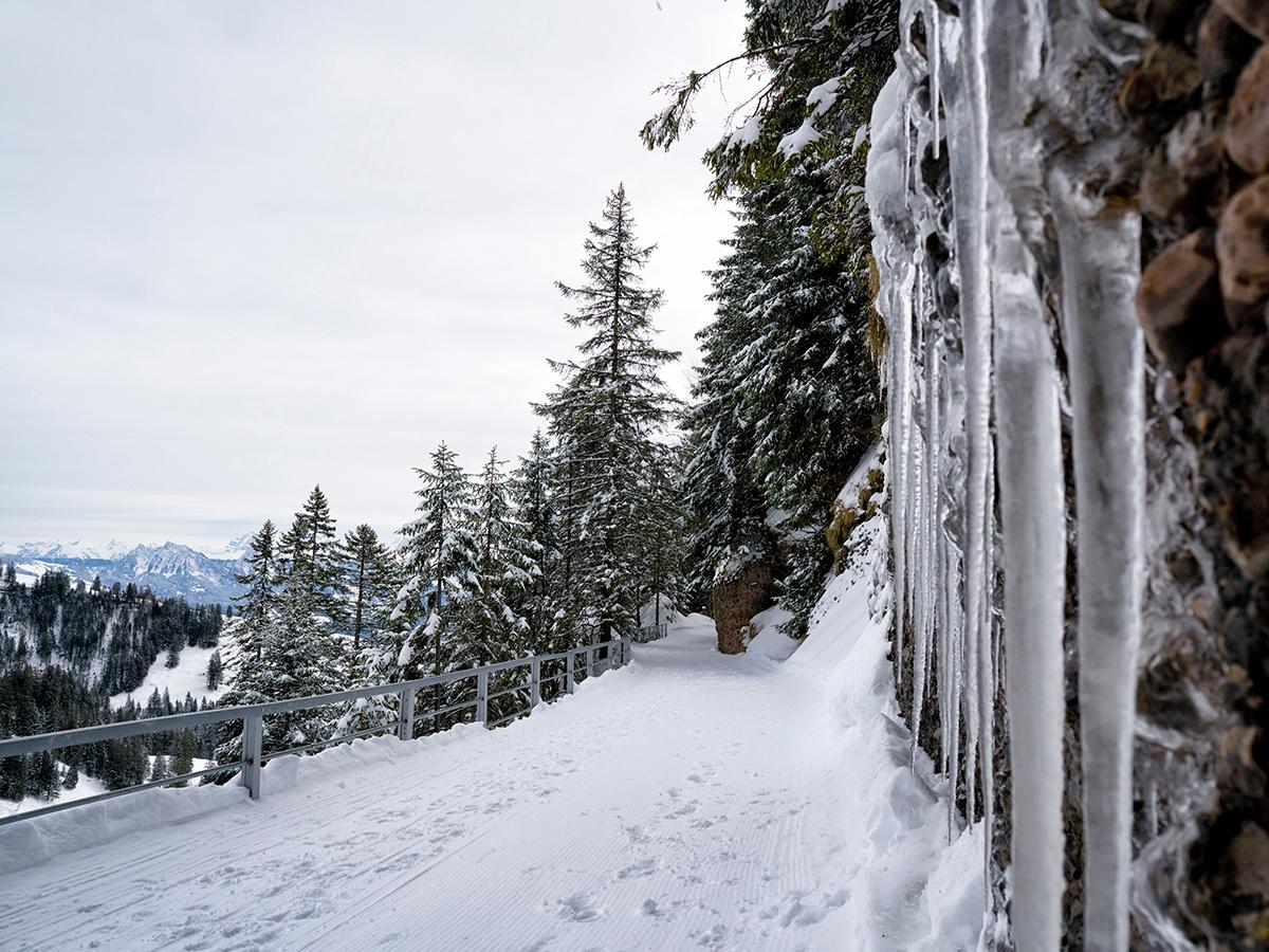 The Rigi Panorama Path