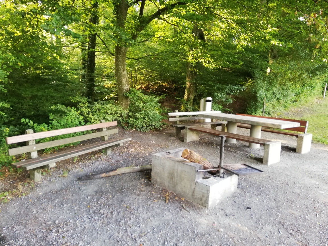 Seon, Unteres Hübelholz