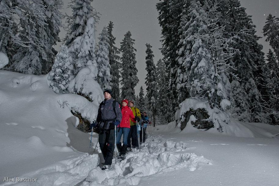 Muotathal: Vollmond-Schneeschuhtour